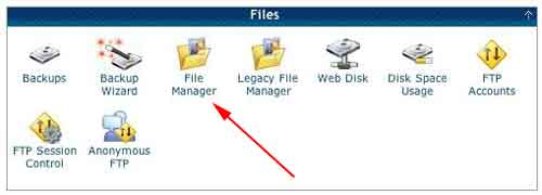 The Files panel. Double-click on File Manager.