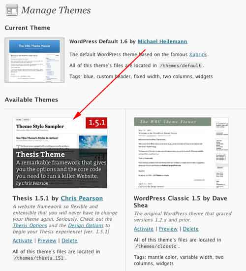 Figure 9: The themes panel with the Thesis theme
