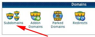 Figure 2: cPanel Domains Panel