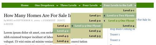 Figure 4: CSS menu with left dropdown