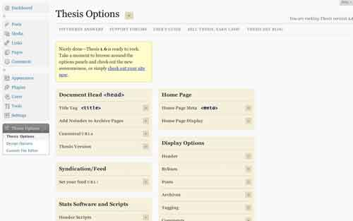 Figure 10: The Thesis 1.6 Options panel