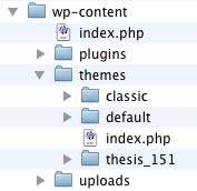 Figure 2: The /wp-content folder before uploading Thesis_16