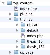 Figure 3: The /wp-content folder after uploading Thesis_16