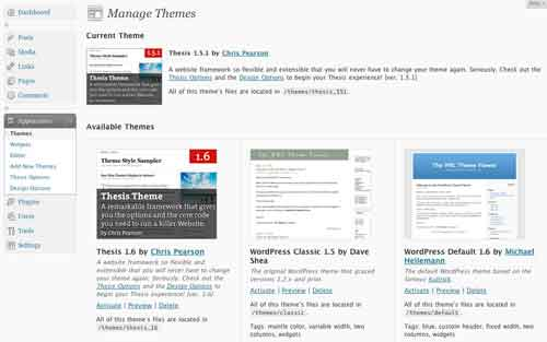 Thesis 16 wordpress theme