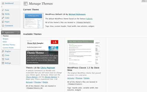 Figure 9: The themes panel with the Thesis 1.6 theme
